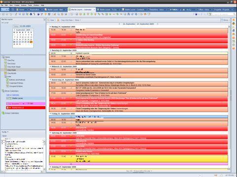 Screenshot Lotus Notes Kalender mit webtermine.at eingeblendet (Thumbnail)